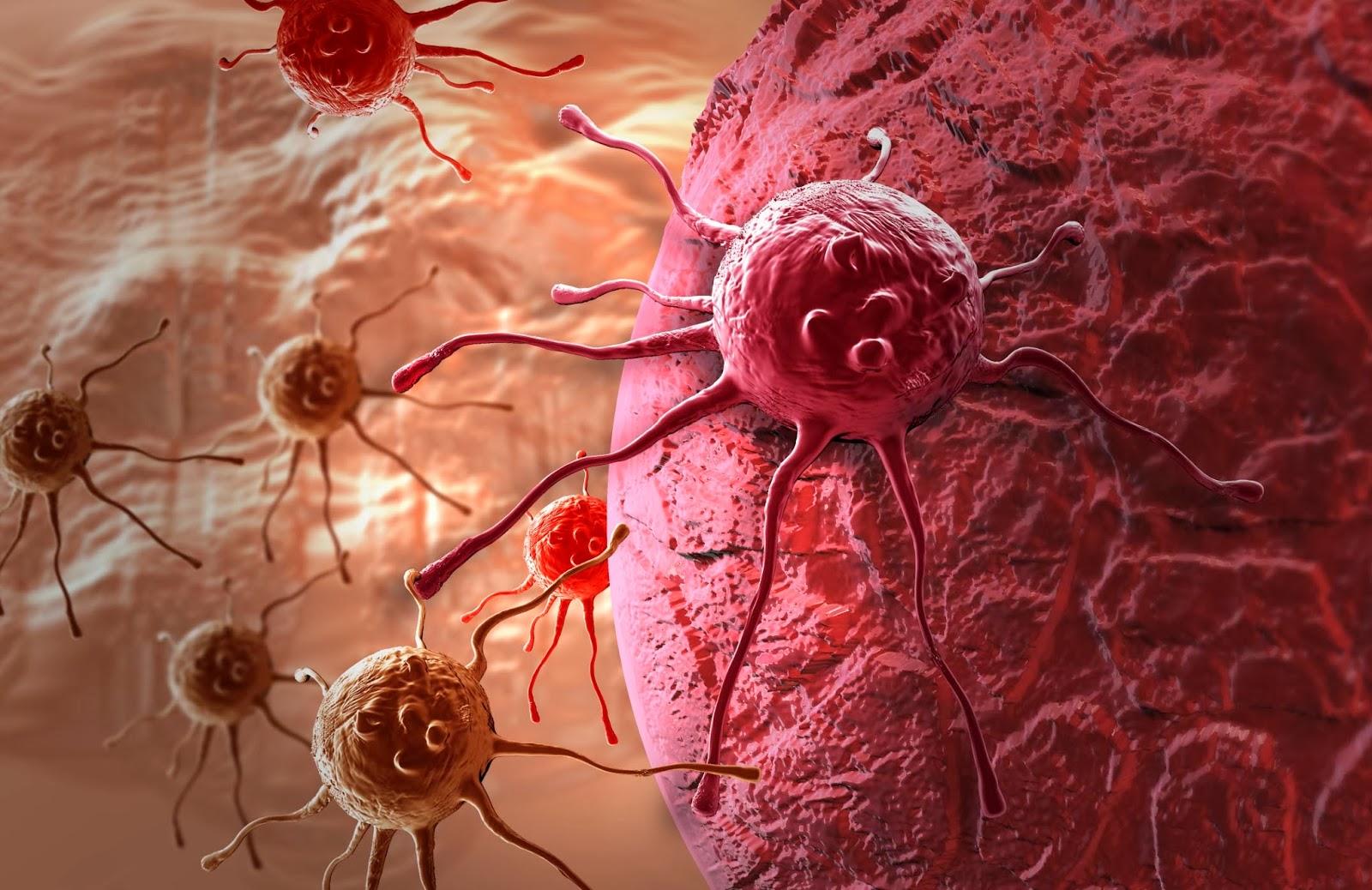 Британские ученые выяснили, что иммунотерапия может избавить от неизлечимой раковой опухоли