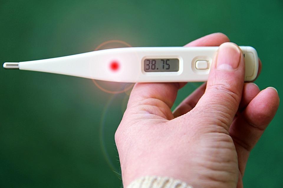 В Марий Эл за неделю 27 человек заболели свиным гриппом