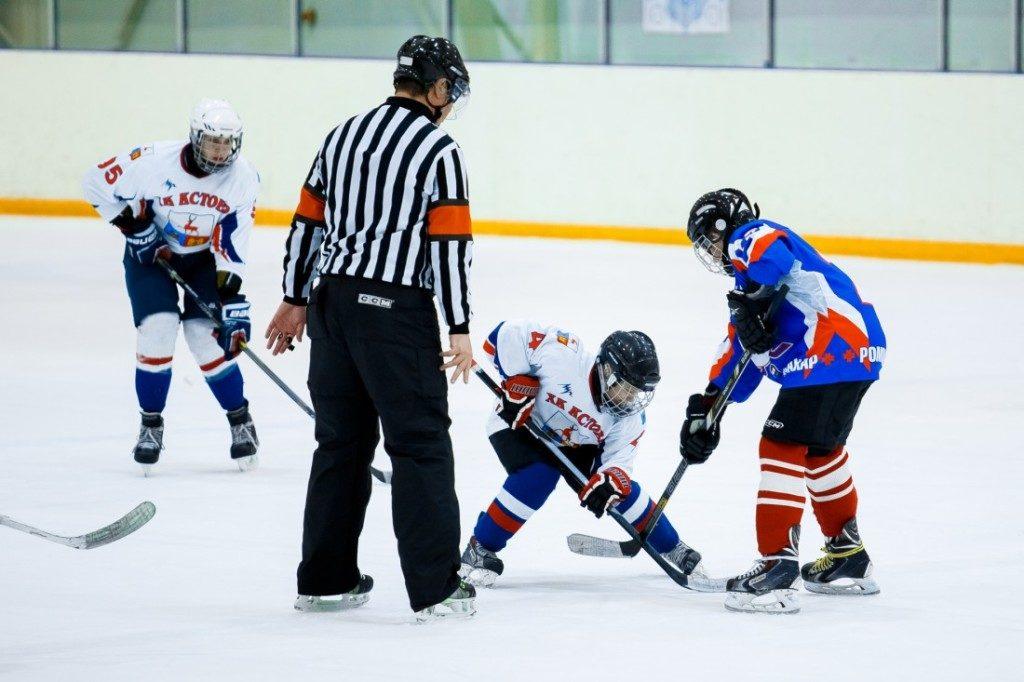 В Марий Эл поставили оборудование для юных хоккеистов