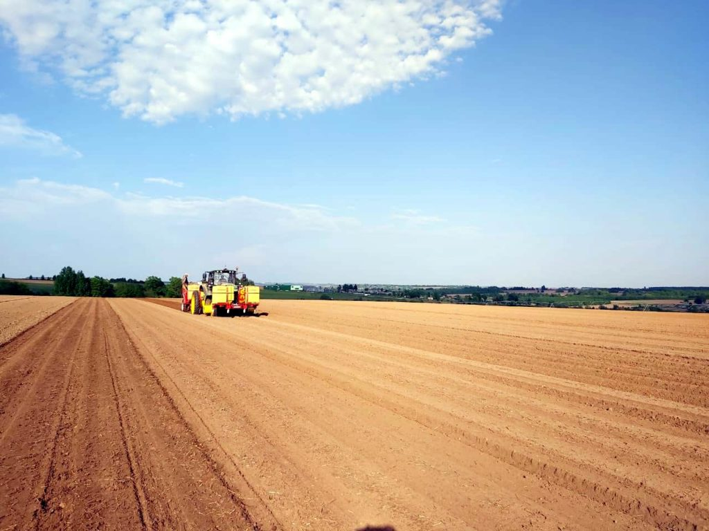 Семь молодых фермерских хозяйств получили грантовую поддержку в Марий Эл