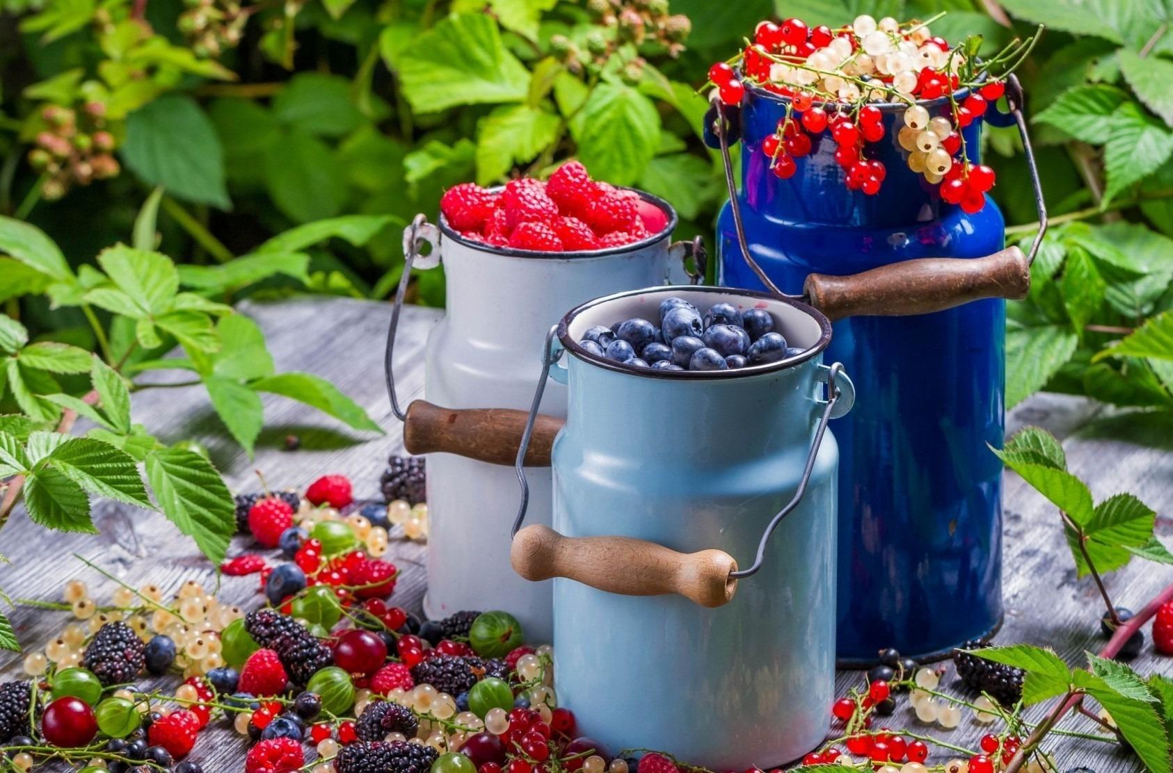 Диетолог Мухина посоветовала сочетать ягоды со сметаной и творогом