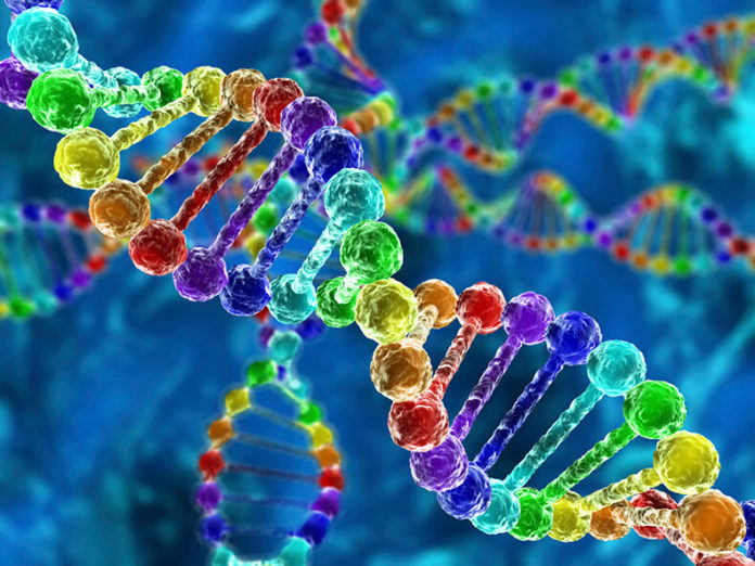 Найдена генная мутация, которая защищает от ВИЧ