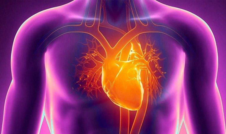 Повышенная религиозность человека может приводить к сердечно-сосудистым болезням