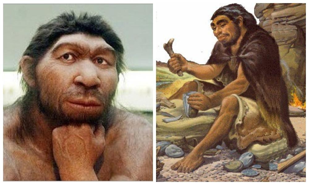 Неандертальцы сделали рисунки на сталагмитах в Испании 60 тысяч лет назад