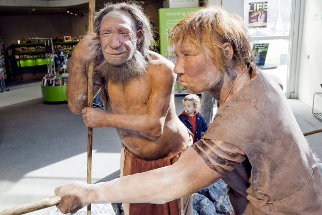Денисовцы опередили неандертальцев в заселении пещер Горного Алтая