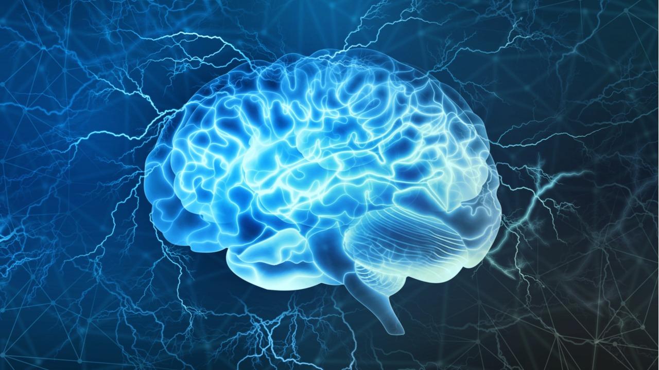 В мозге человека найден новый тип сигнала между клетками