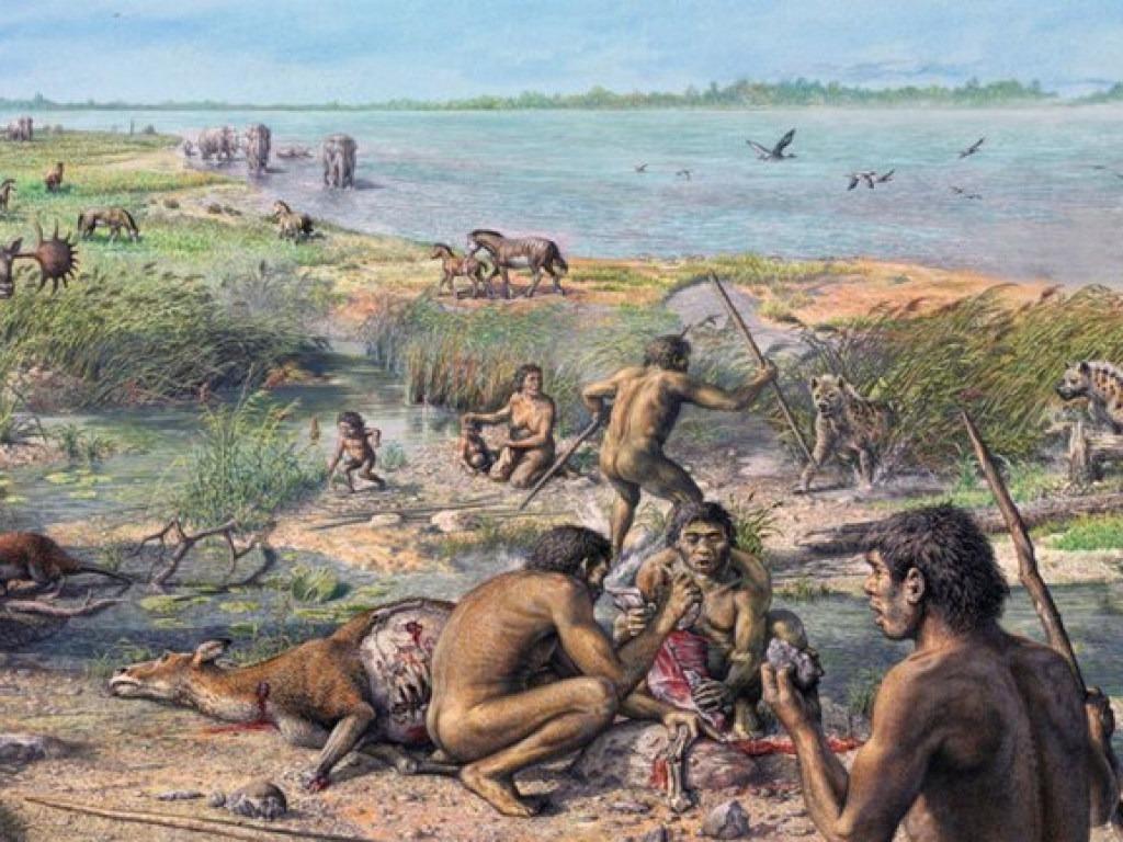 «Лесные острова» Амазонии оказались следами первых земледельцев