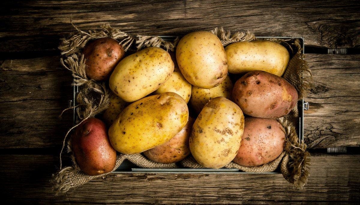 Кардиолог Кореневич предупредила о вреде сваренного картофеля