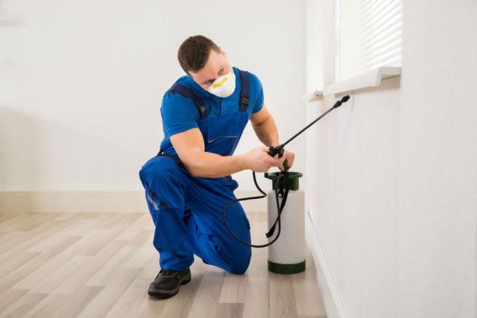 Роспотребнадзор дал рекомендации по дезинфекции жилых помещений
