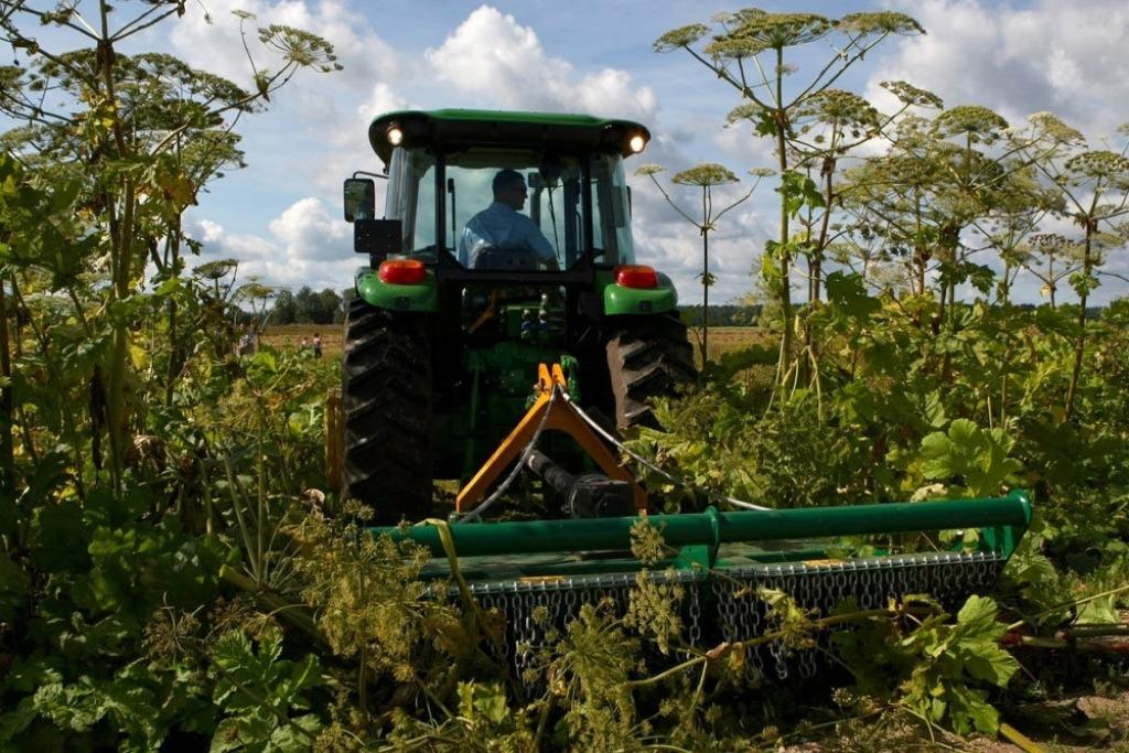 Российские ученые увеличили урожайность в четыре раза с помощью нового удобрения