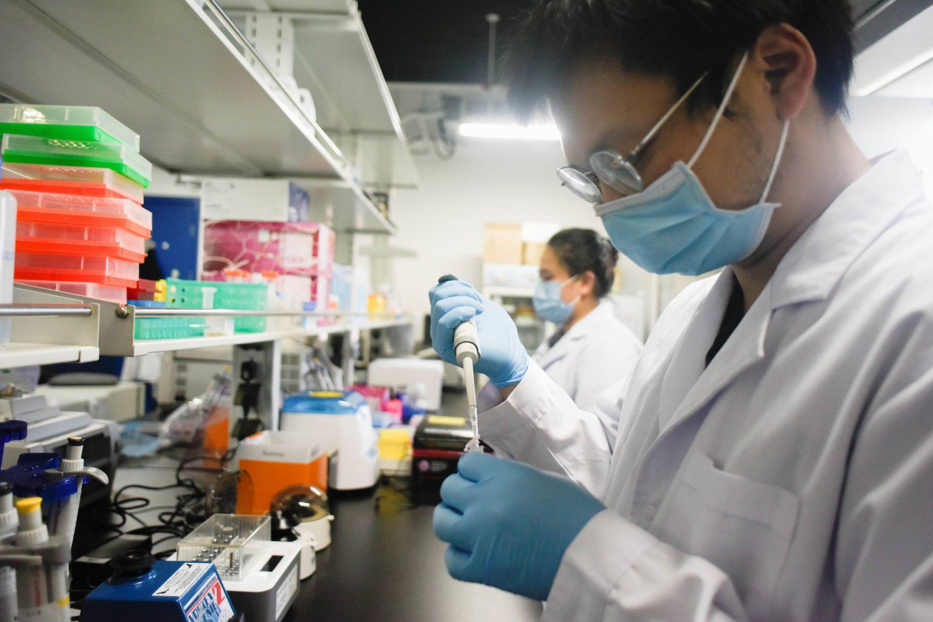 Старые антитела SARS-CoV-2 оказались бесполезными против новых штаммов коронавируса COVID-19
