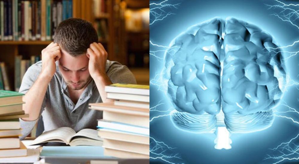 Мозг взрослых людей склонен сопротивляться изменениям