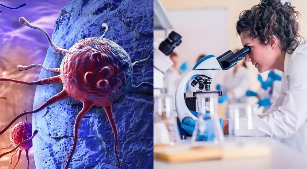 Ученые-генетики выявили тысячи механизмов мутаций рака