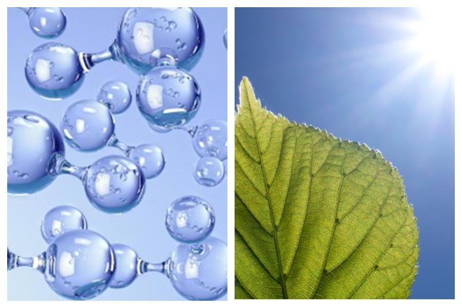В Кембридже смогли генерировать чистое топливо из света, воды и СО2