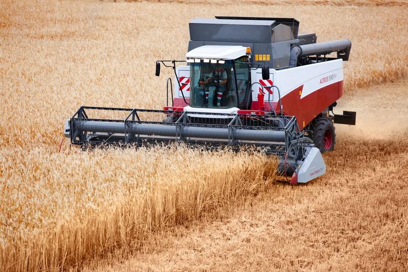Маристат подготовил аналитику о сельском хозяйстве республики