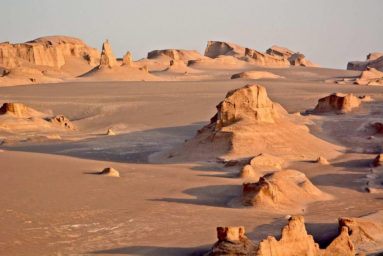 Ученых из Калмыкии разработали проект остановки роста пустыни