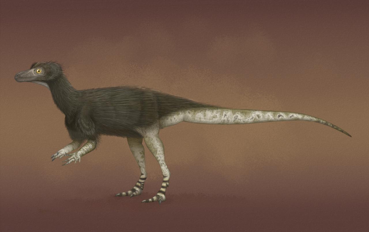 В Великобритании выявили останки хищного динозавра размером с курицу