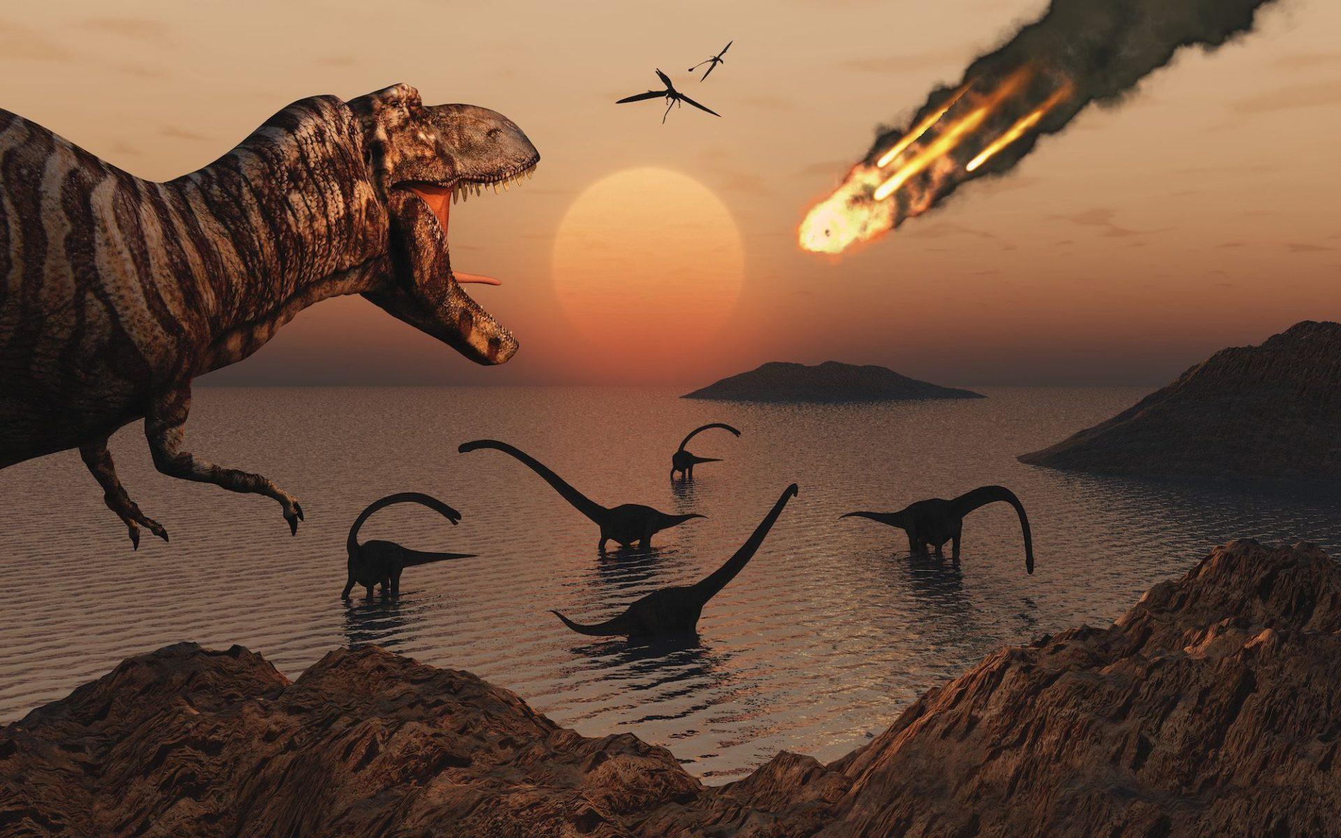 Массовые вымирания животных на Земле происходят каждые 27 млн. лет