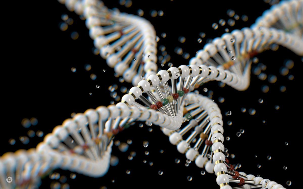 Ученые открыли новую комбинацию лекарств-ингибиторов редкой формы рака