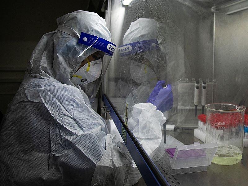 Ученые из США планируют создавать вакцины от разных штаммов коронавируса