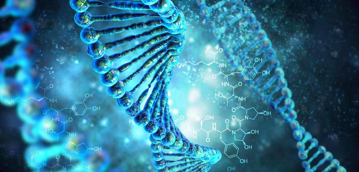 Система редактирования генома разработана в России и Бельгии