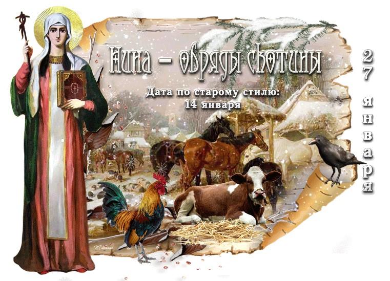 Праздники 27 января: Нина – обряды скотины