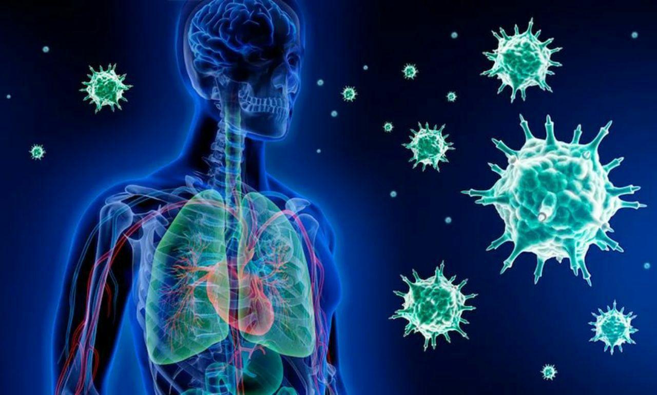Длительность COVID-19 зависит от иммунного ответа пациента