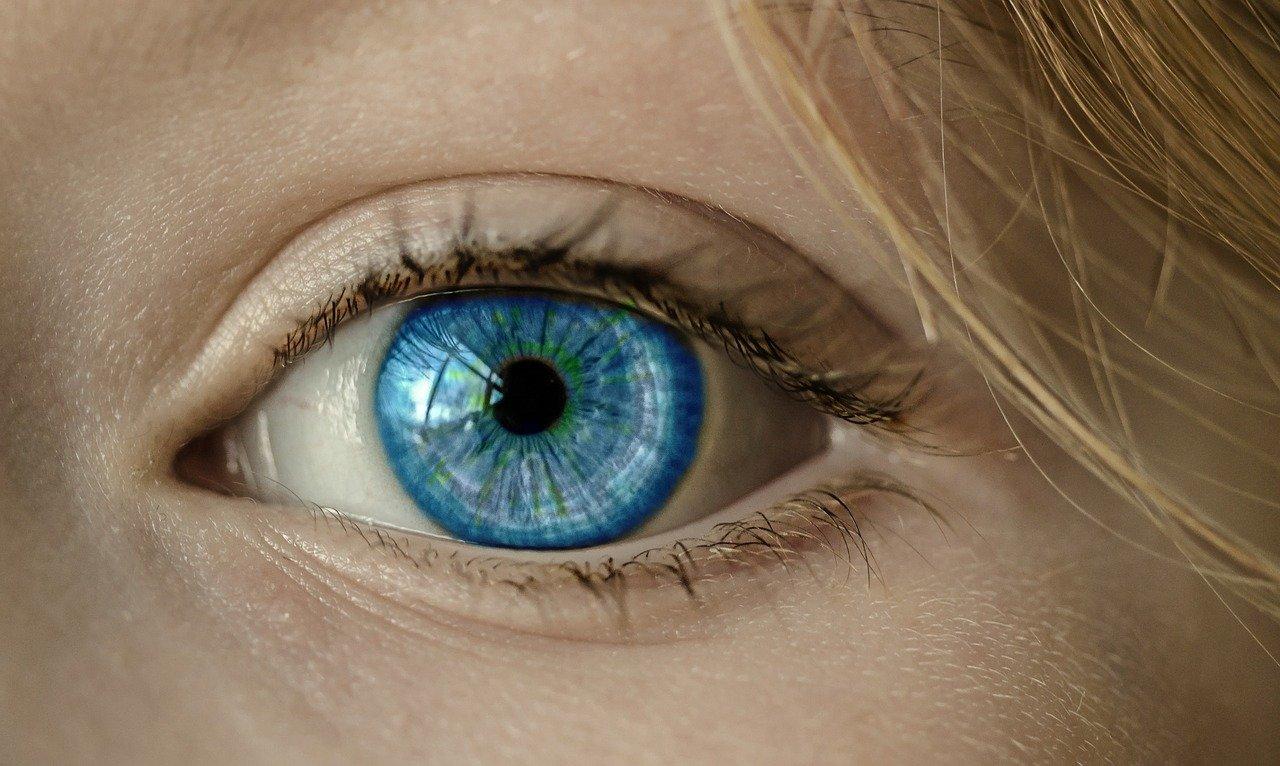 Китайский алгоритм машинного зрения в распознавании образов впервые превзошёл людей