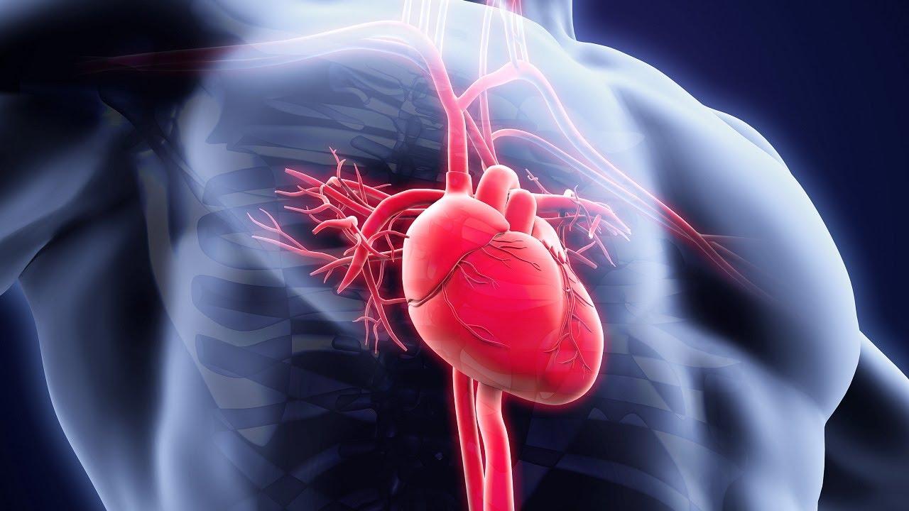 Летальность с коронавирусом COVID-19 при инфаркте миокарда выросла в 70 раз