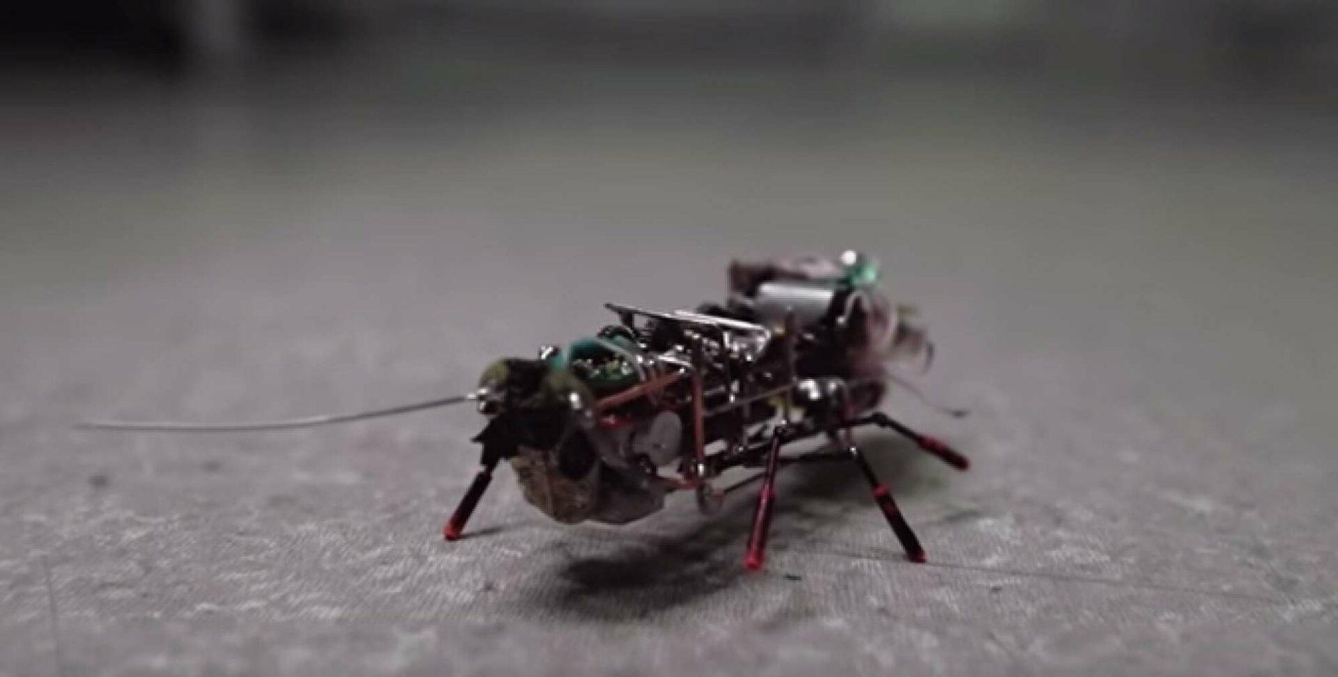 Робот-таракан инженеров из США сможет выявлять утечки газа и искать людей