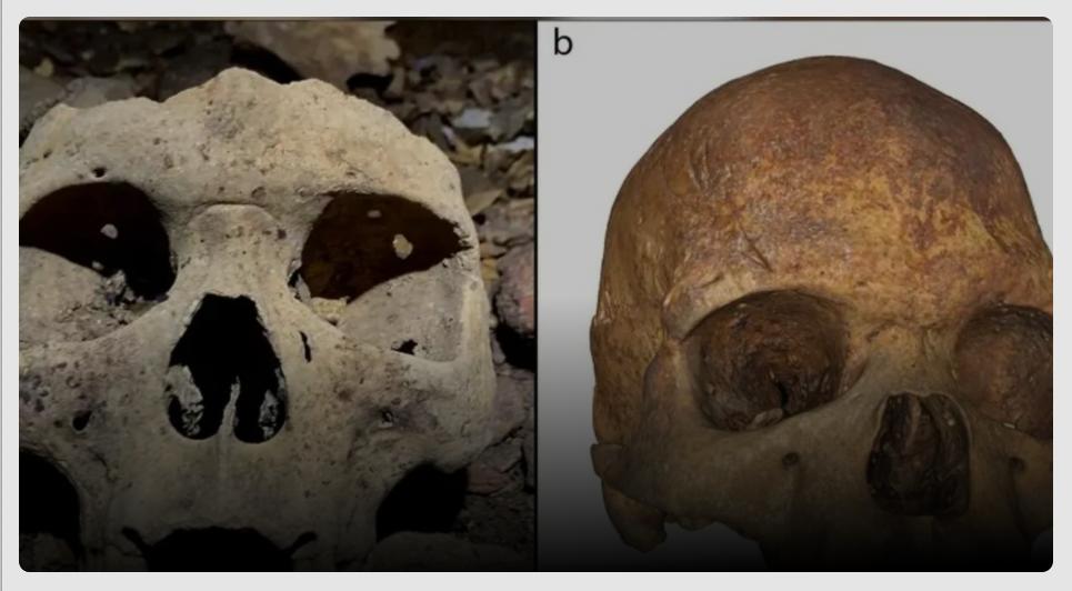 В Центральной Африке нашли 500-летние останки людей с модификациями лица