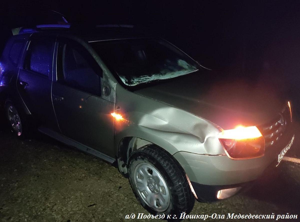Водитель Renault сбил пожилого велосипедиста на подъезде к Йошкар-Оле