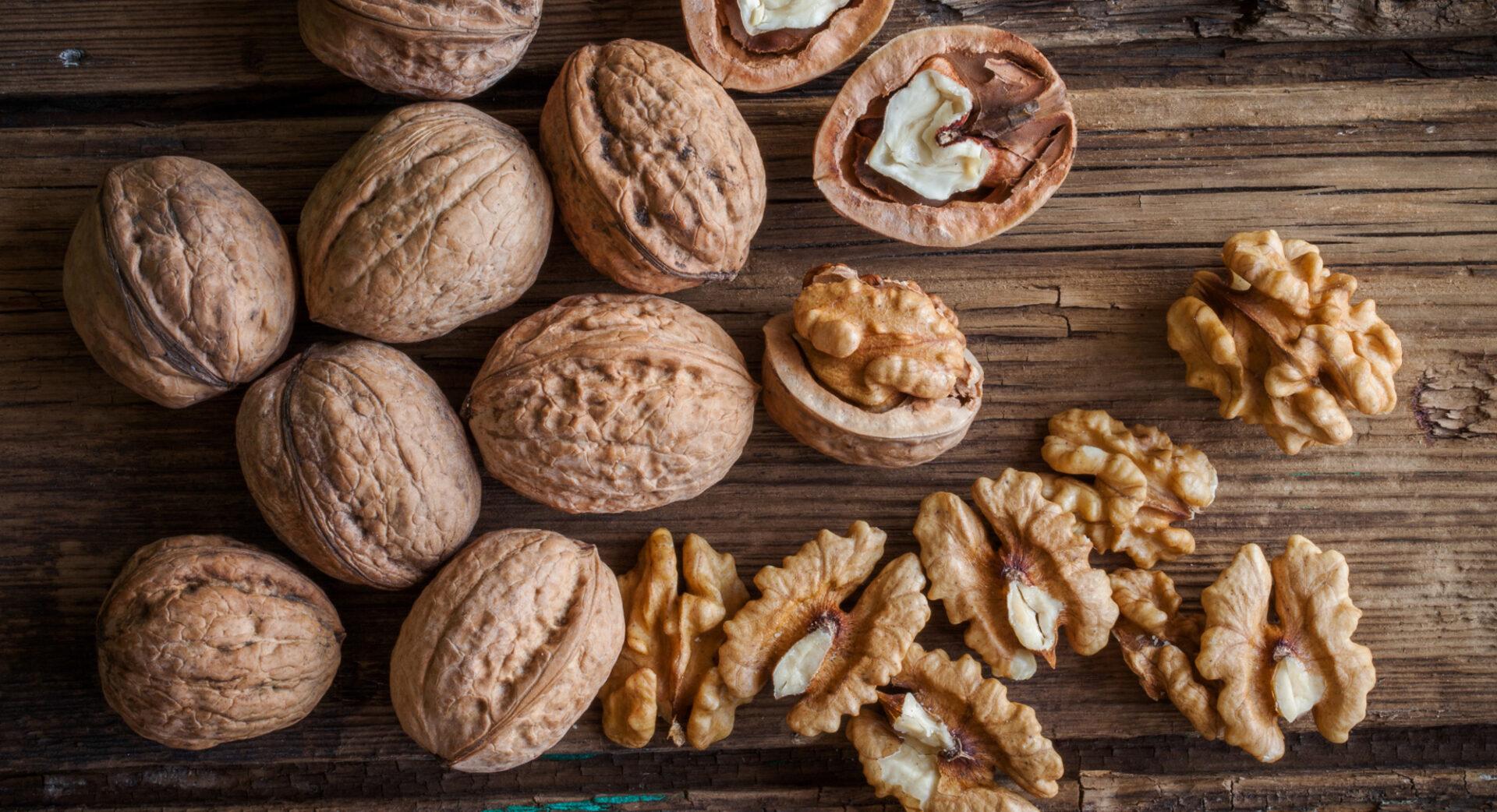 Самарским биологам удалось вывести 2 новых сорта грецкого ореха
