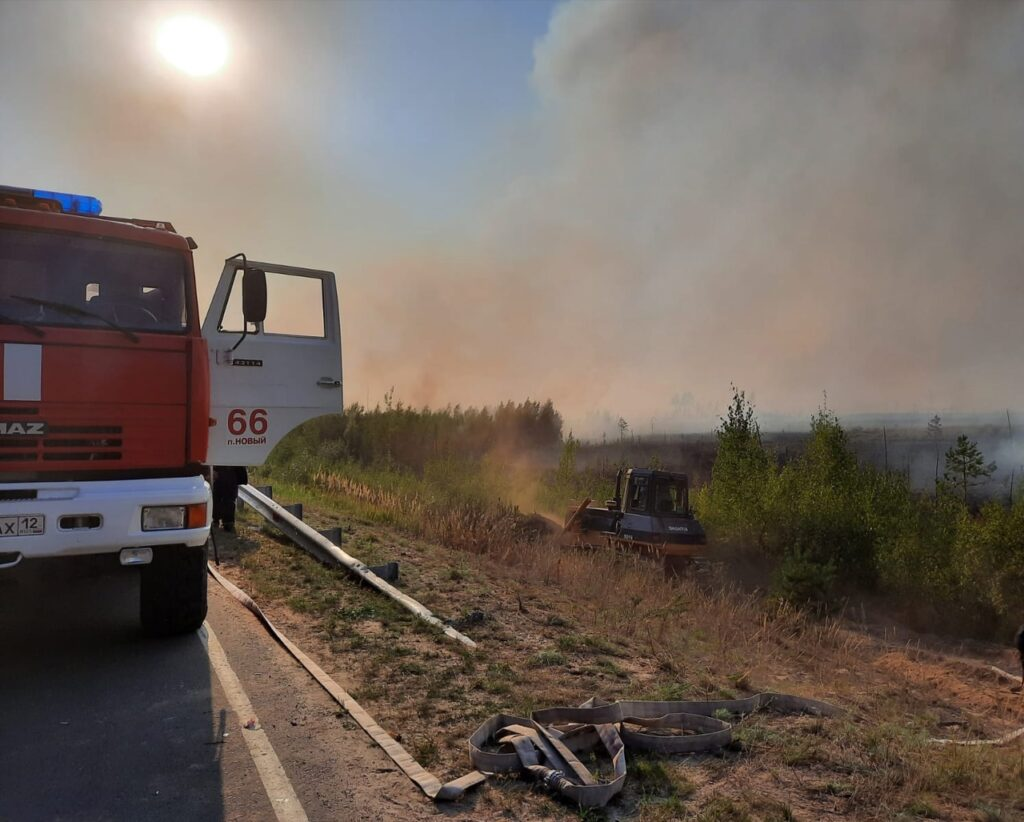 Лесной пожар у Соснового бора в Марий Эл локализован