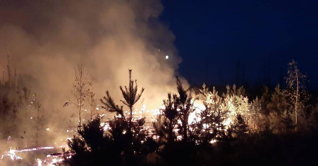 В Марий Эл набирают добровольцев для тушения лесного пожара