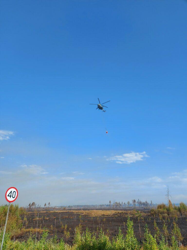 Глава Марий Эл Александр Евстифеев подписал указ о введении режима ЧС из-за лесного пожара