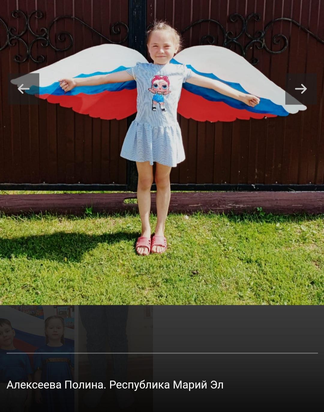 Жителей Республики Марий Эл пригласили на онлайн-программу ко Дню российского флага