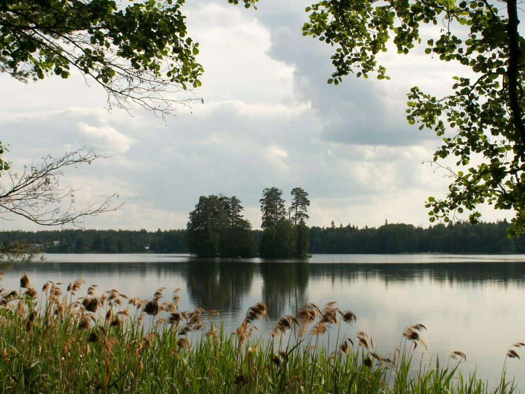 Сохранить озера и развить их инфраструктуру предлагает Глава Марий Эл