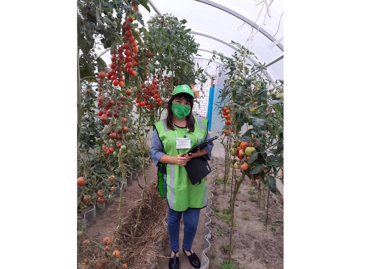 В Марий Эл переписчики завершают работу по сельскохозяйственной микропереписи