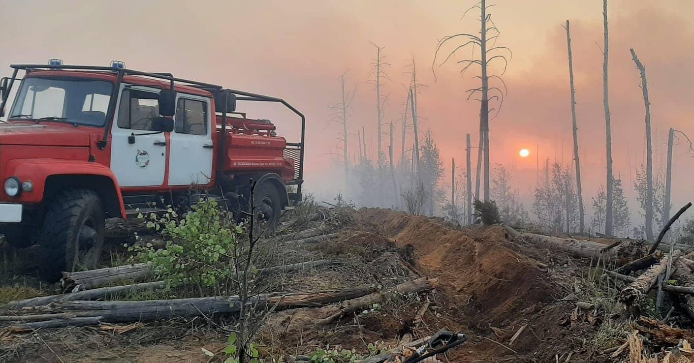 В Марий Эл гроза спровоцировала лесной пожар