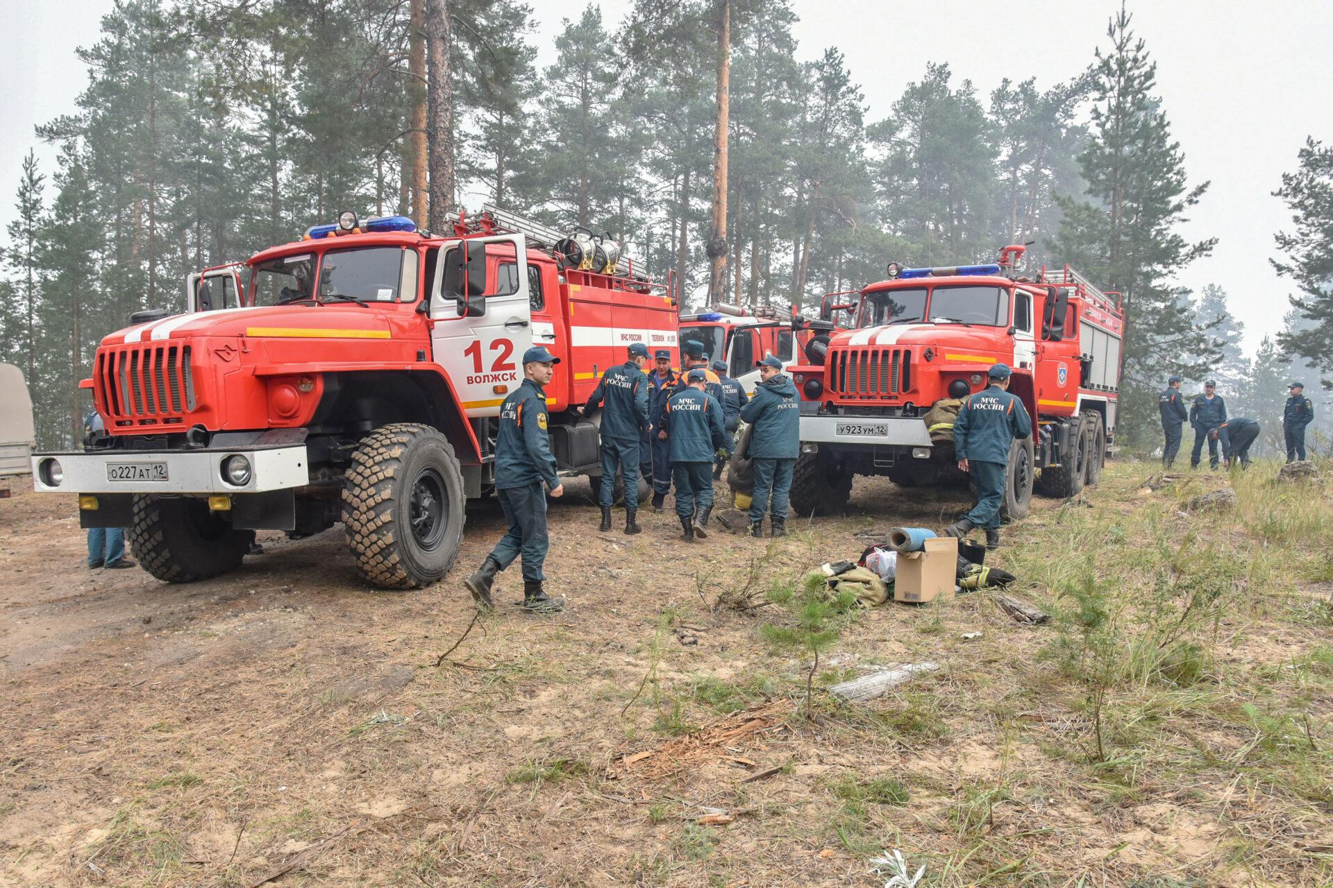 Число привлеченных для тушения лесного пожара в Марий Эл военных увеличат до 100