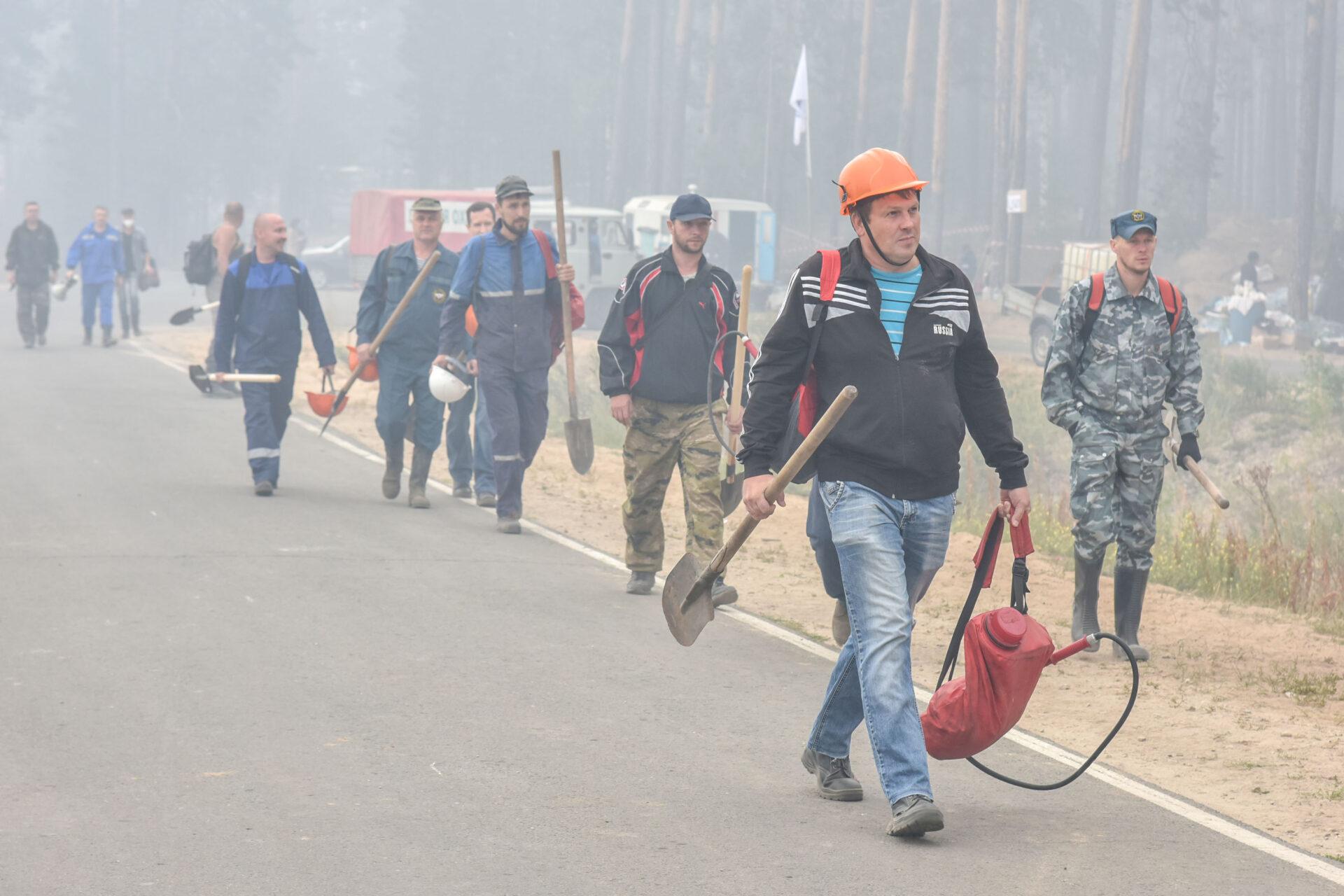 В выходные дни помощь волонтеров на лесных пожарах в Марий Эл не потребуется