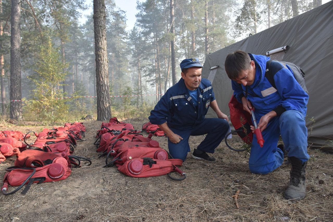 1500 ранцевых лесных огнетушителей закупят в Марий Эл