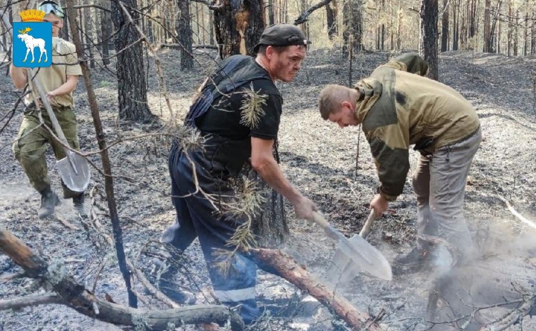 В Марий Эл по-прежнему требуются добровольцы для тушения пожаров