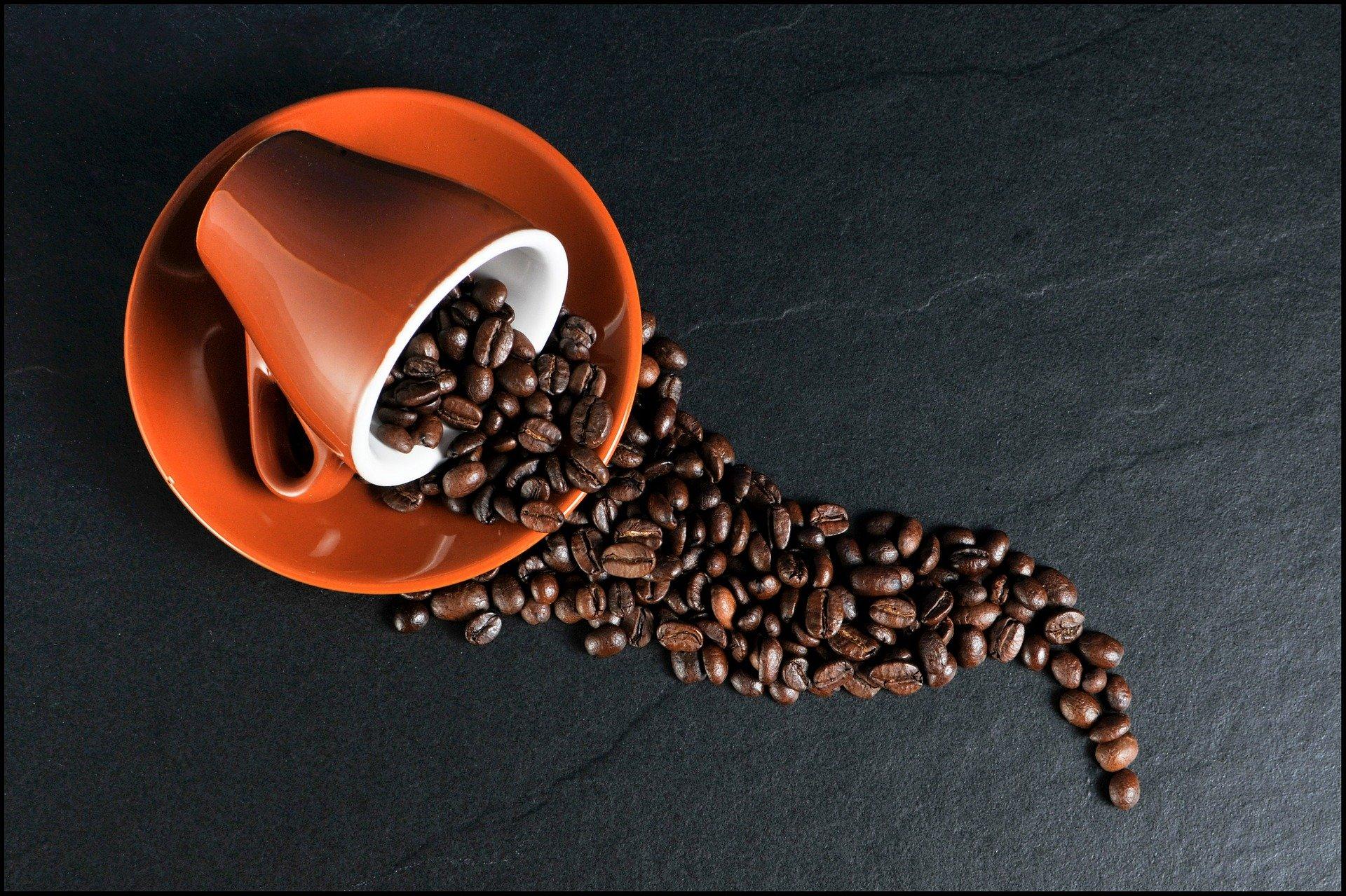 Ученые нашли способ приготовления алкогольных напитков из кофейной гущи