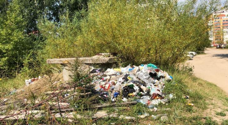 Жители Йошкар-Олы жалуются на стихийную свалку в Сомбатхее