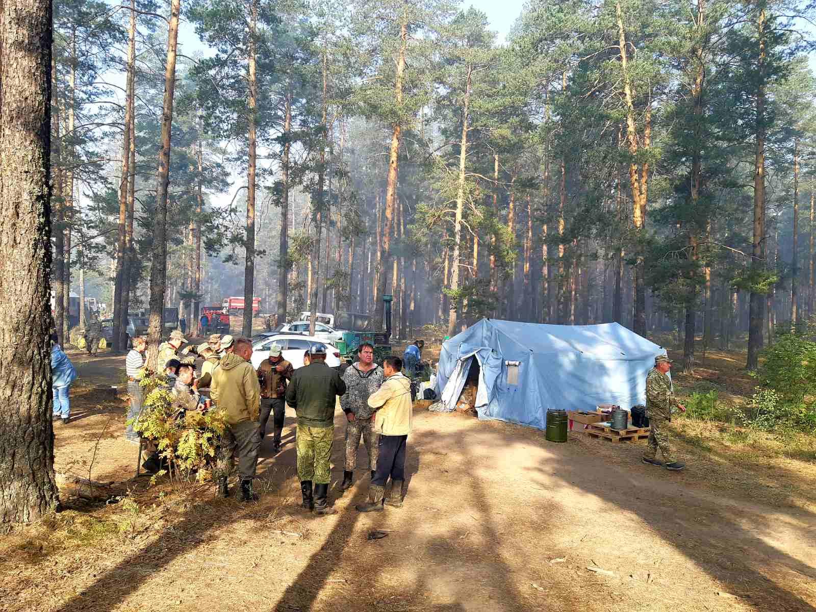 В Марий Эл продолжается ликвидация тления лесного пожара