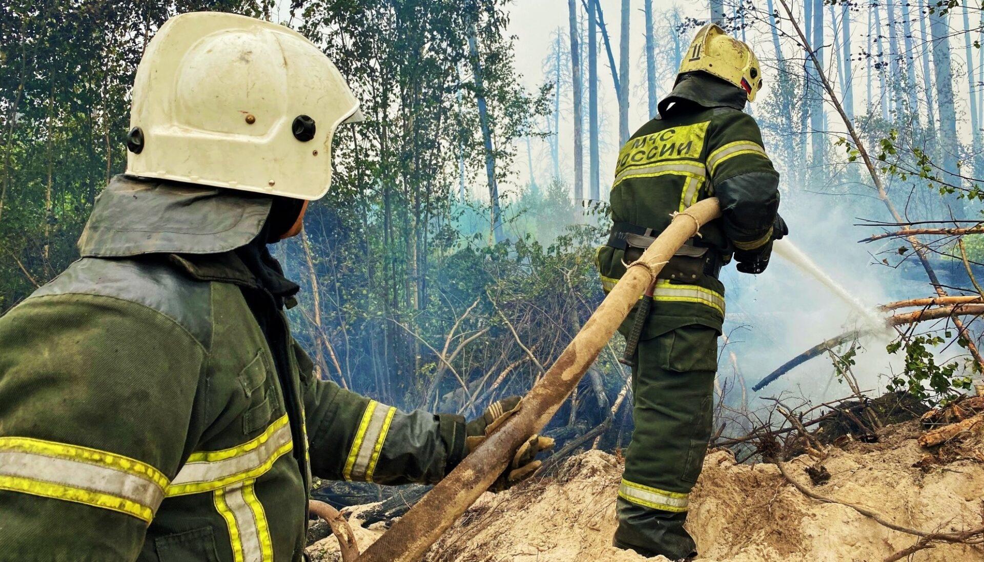 Спасатели Марий Эл помогают тушить лесные пожары в Мордовии