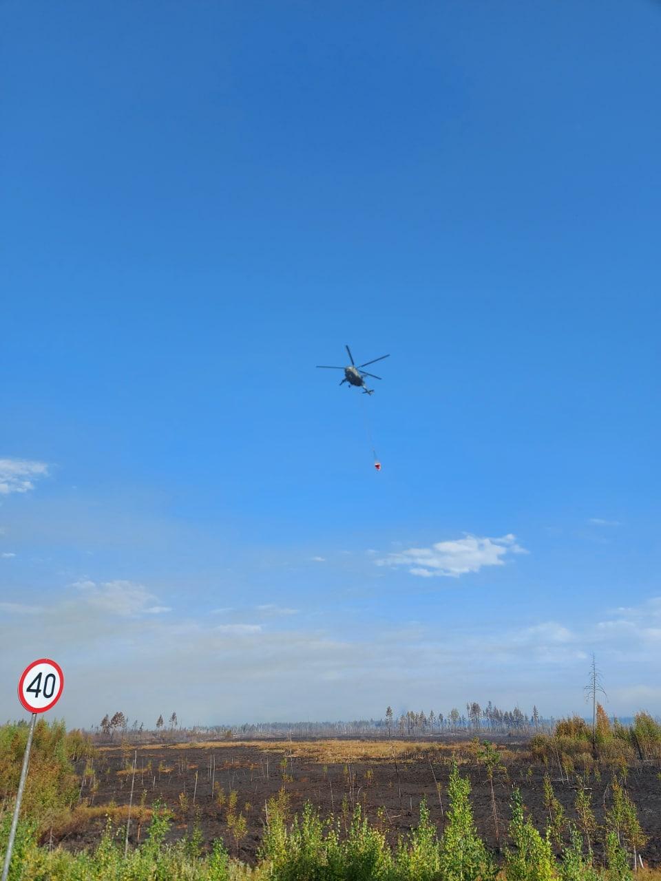 Лесной пожар в Марий Эл помогает тушить авиация ЦВО