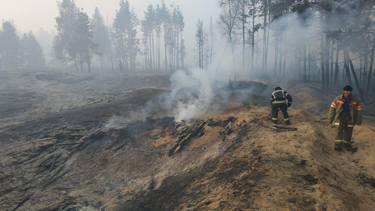 Лесные пожары в Марий Эл: день четвертый